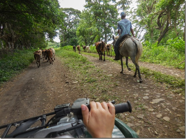 Quad bike Ometepe