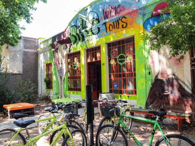 Bacchus bikes Mendoza