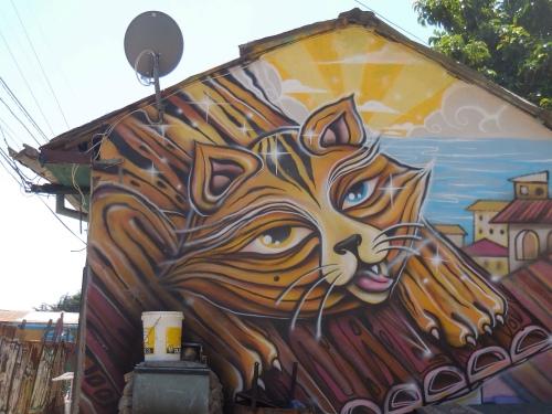 Street art, Valparaiso