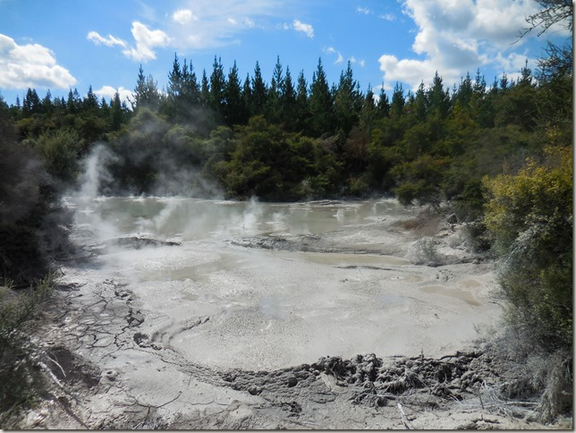 Wai-o-tapu free volcanic mud pools