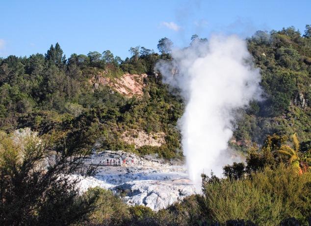 Pohutu geyser